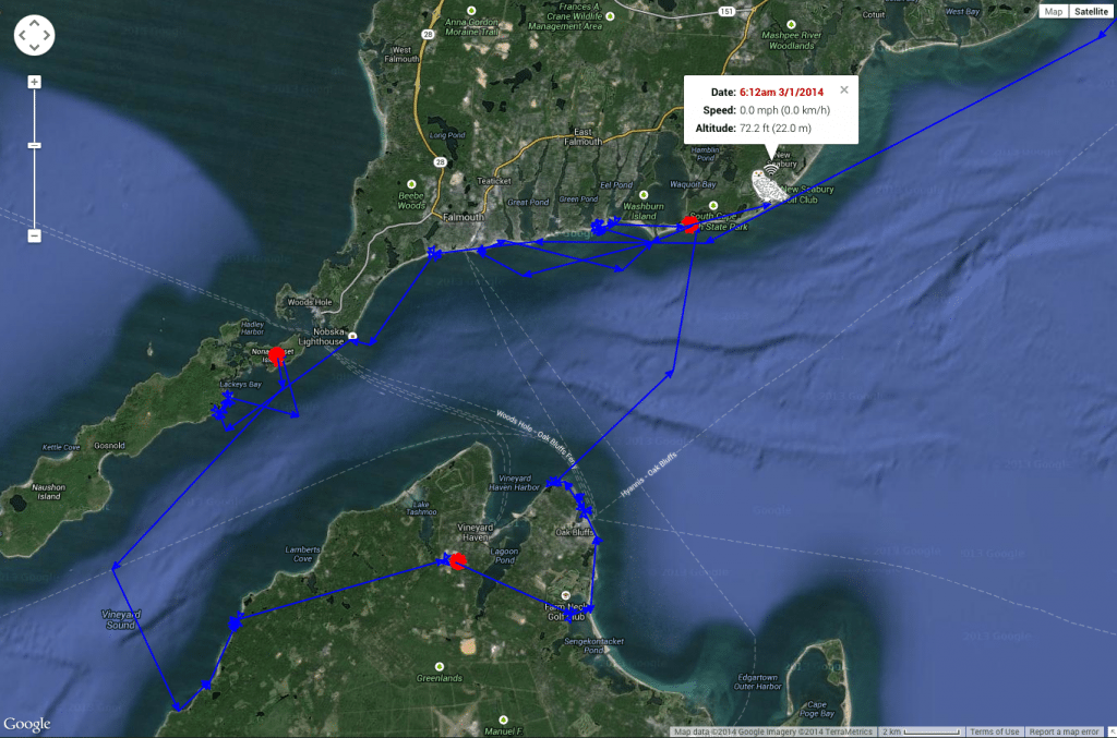 Sandy neck's movements last week, crossing Vineyard Sound a couple of times between Cape Cod and the islands. (©Project SNOWstorm)