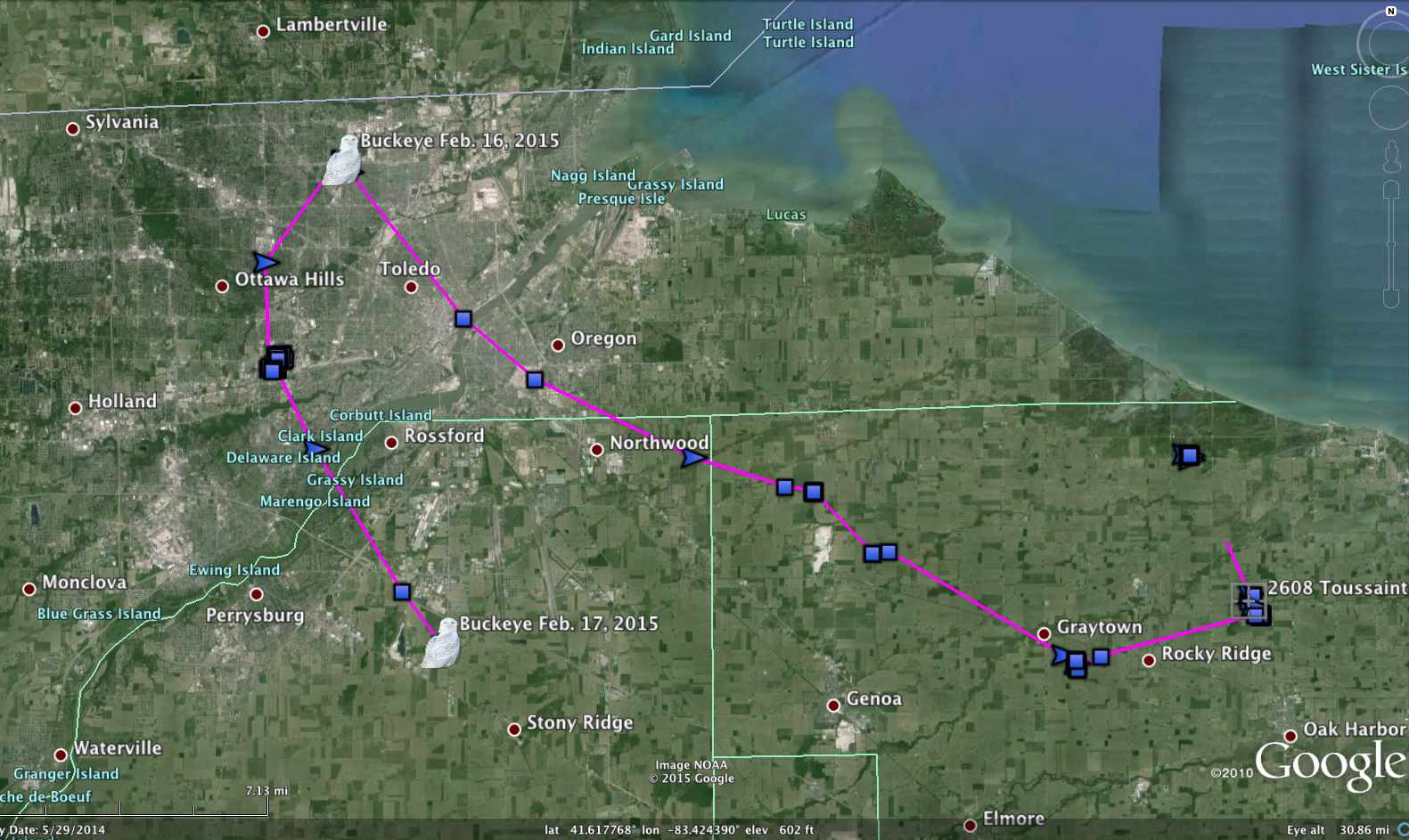 Buckeye's almost-to-Michigan-and-back route over the past couple of days. (©Project SNOWstorm and Google Earth)