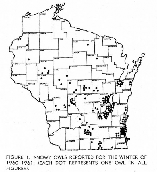 Distribution of Snowy Owls reported in Wisconsin during the winter of 1960-61. Map courtesy of the Wisconsin Society of Ornithology Passenger Pigeon (see Sindelar 1966).