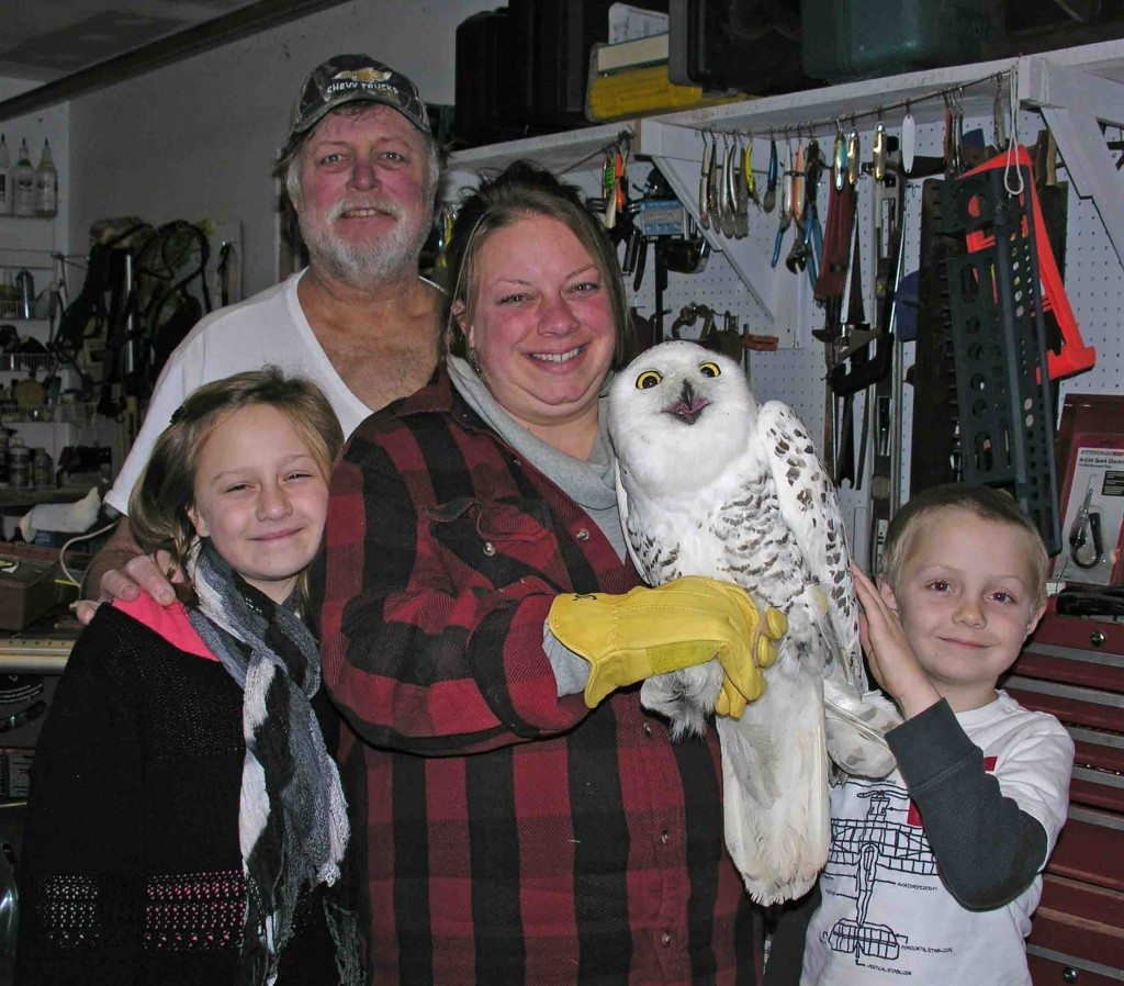 Bob and Kathy Gallagher, who with their kids have been assisting Tom McDonald with his snowy owl research in upstate New York for years, hold Flanders -- the first tagged owl of the 2015-16 season -- before her release. (©Tom McDonald)