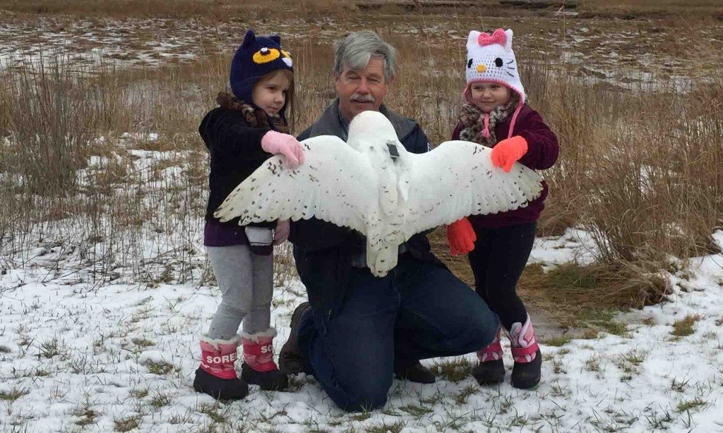 With some help from his granddaughters, Norman Smith gets ready to release Salisbury, an adult male snowy he'd first banded in 2014. (©Hillary Truslow)