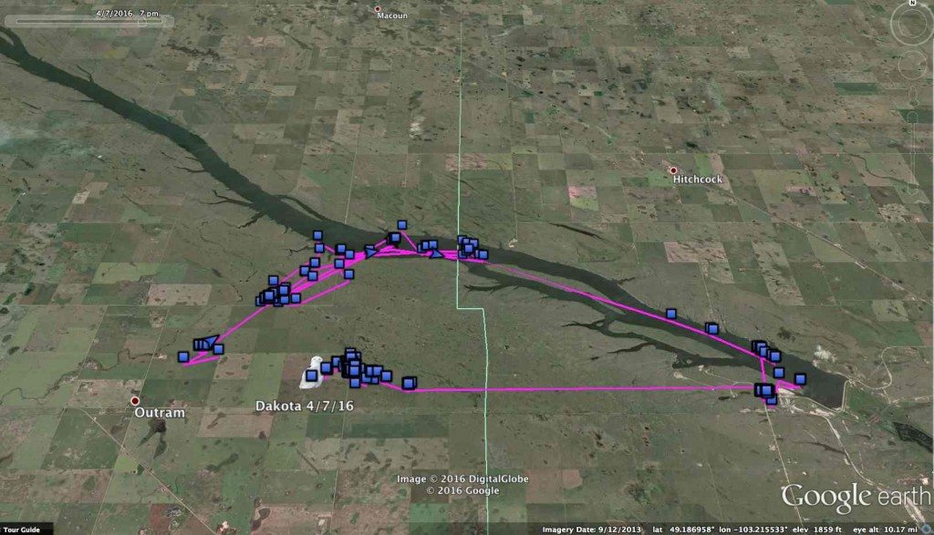 Dakota's current haunts on and around McDonald Lake, in the wheat-and-prairie country of southern Saskatchewan. (©Project SNOWstorm and Google Earth)